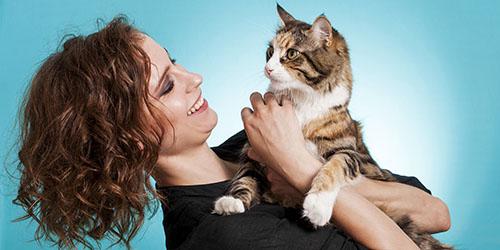 к чему снится кошка женщине