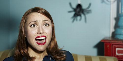 увидеть во сне паука