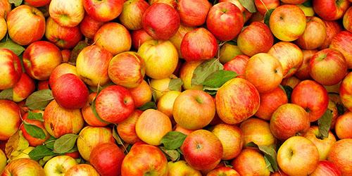 видеть во сне яблоки