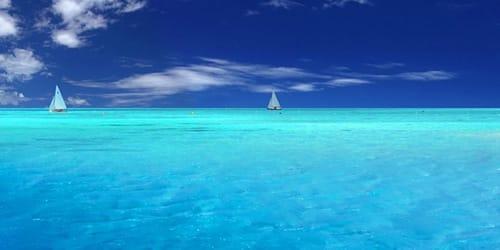 сонник океан или море