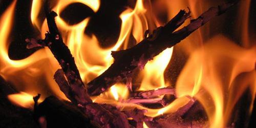 сонник огонь