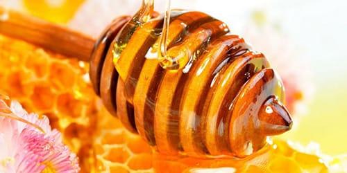 Сонник мед к чему снится мед во сне