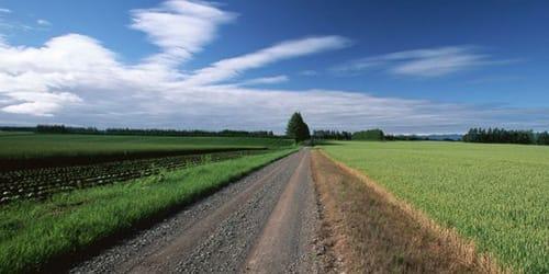 К чему снится бежать по трассе