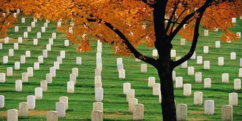 сонник кладбище