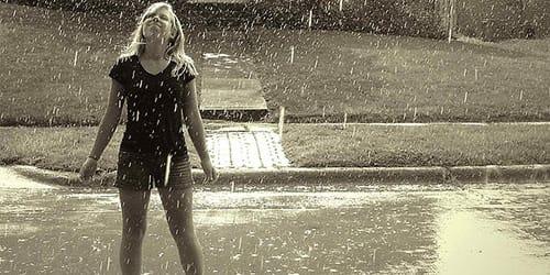 сонник дождь
