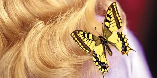 насекомые на волосах во сне
