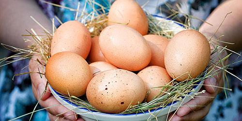 видеть яйца во сне