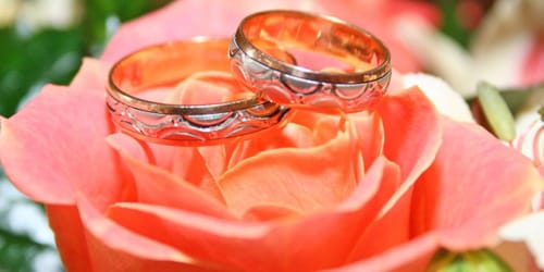 два кольца