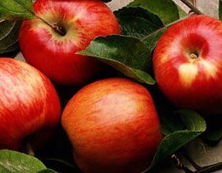 К чему снятся красные яблоки?