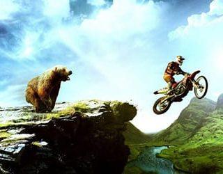 Медведь гонится