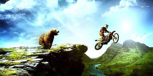 сонник медведь гонится
