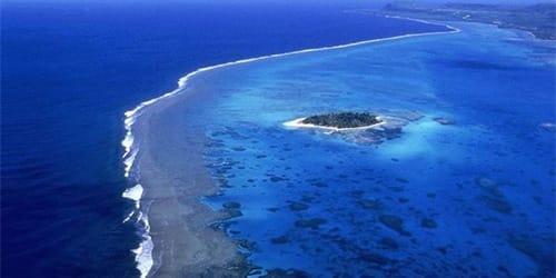 сонник океан
