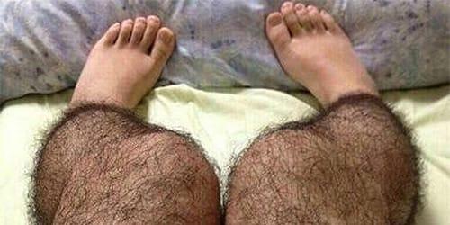 Волосатые ноги брить сонник фото