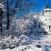 сонник зима