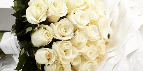 к чему снятся белые розы