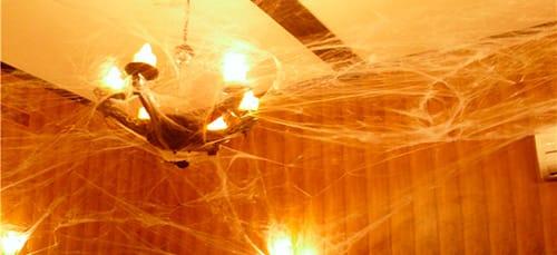 паутина на потолке