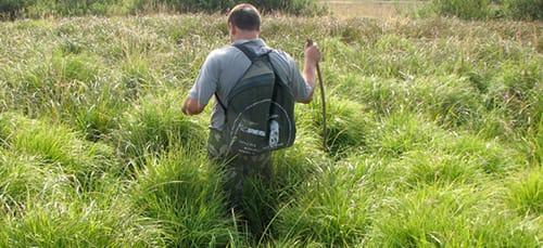 к чему снится идти по траве