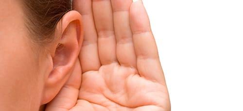 сонник ухо