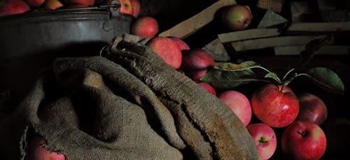 к чему снится мешок яблок
