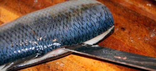 К чему снится селедка захотелось рыбки