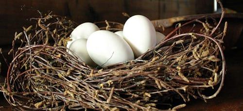 яйца в гнезде во сне