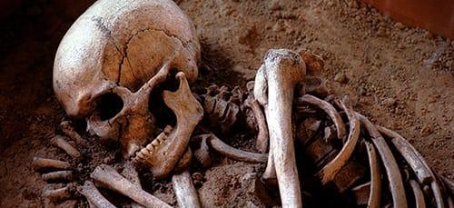 Сонник кости к чему снится кости во сне