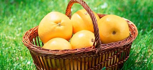 собирать фрукты