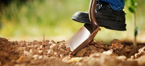 Сонник копать землю к чему снится копать землю во сне