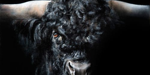 черный бык с рогами во сне