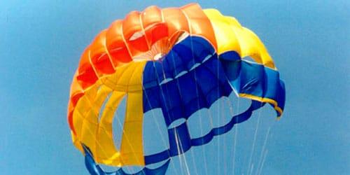сонник дырявый парашют