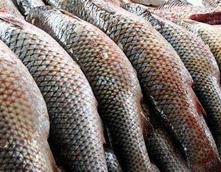 Покупать рыбу