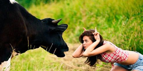 Сонник рога к чему снится рога во сне