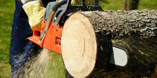 к чему снится пилить дрова