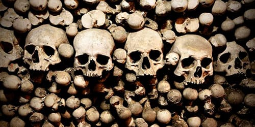 сонник скелет