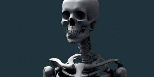 к чему снится человеческий скелет