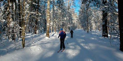 сонник кататься на лыжах