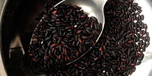 сонник семена