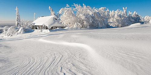к чему снится много белого снега