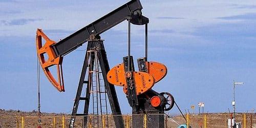 сонник нефть