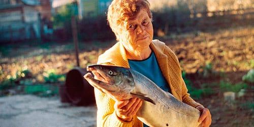 к чему снится пожилая женщина с рыбой в руках