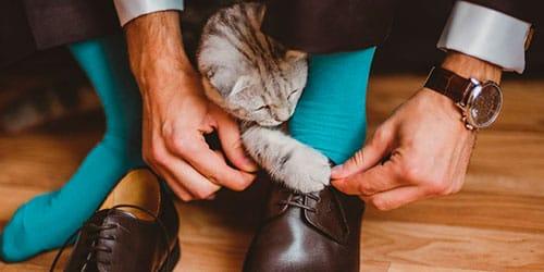 сонник завязывать шнурки