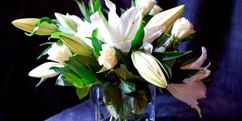 сонник белые лилии