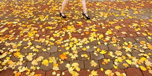 к чему снятся желтые листья