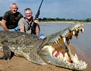 Убить крокодила