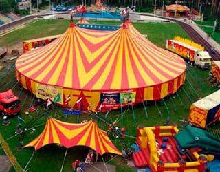 К чему снится цирк?