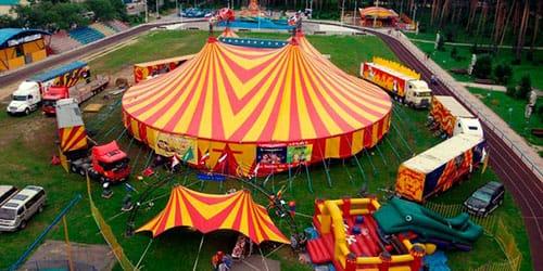 сонник цирк