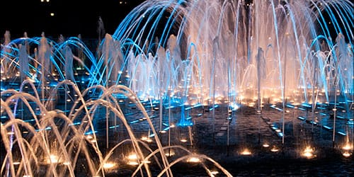 сонник фонтан