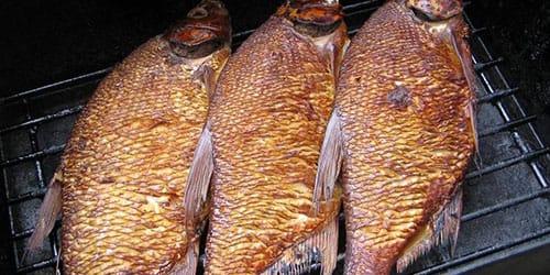 сонник копченая рыба