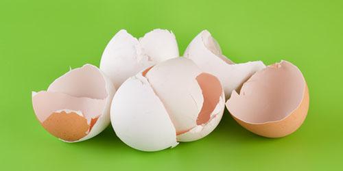 приснилось много скорлупы от яиц