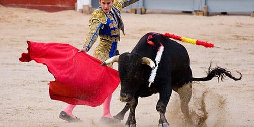 борьба тореадора с быком во сне